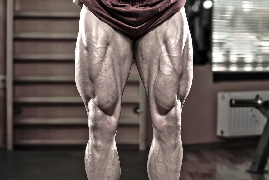 muscularlegs