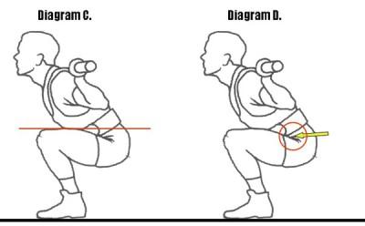 squat figure 1